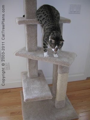 Cat Condo Plans Directions 5 Detail 5