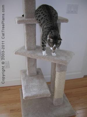 Cat Condo Plans Directions 5 Detail 5