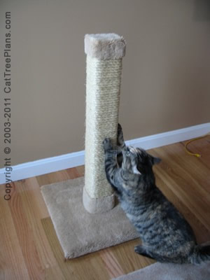 cat tree plan Cat Scratcher Stop Cat Scratching 2 Detail 1