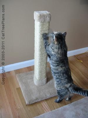 Cat Scratcher Stop Cat Scratching 2 Detail 3