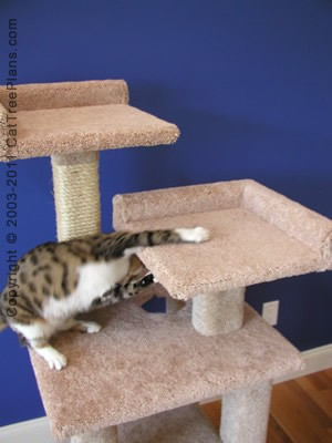 Build A Cat Tower Plans