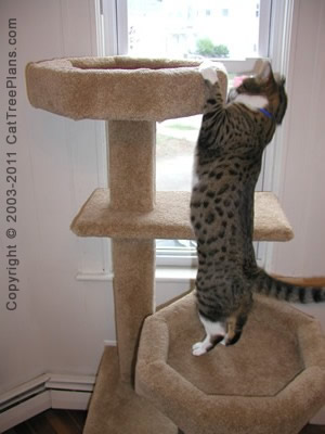 Cat tree plan 10 cat tree plans - How to make a simple cat tree ...