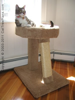 Cat tree plan 6 cat tree plans for Build your own cat scratch tower