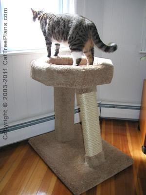 Cat Window Perch Plans 6 Detail 5