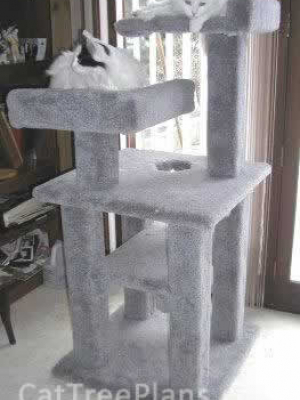 how to make a cat tree Cat Tree Plans Customer 006