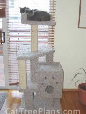 how to make a cat tree Cat Tree Plans Customer 008