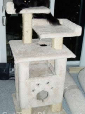 Cat Tree Plans  95 Cat Furniture Plans How To