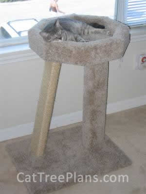 how to make a cat tree Cat Tree Plans Customer 018