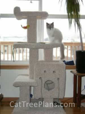 how to make a cat tree Cat Tree Plans Customer 021