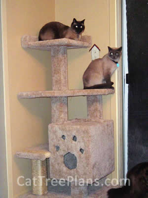 how to make a cat tree Cat Tree Plans Customer 022