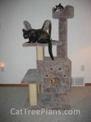how to make a cat tree Cat Tree Plans Customer 025