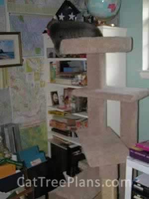 how to make a cat tree Cat Tree Plans Customer 030