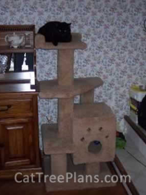 how to make a cat tree Cat Tree Plans Customer 034