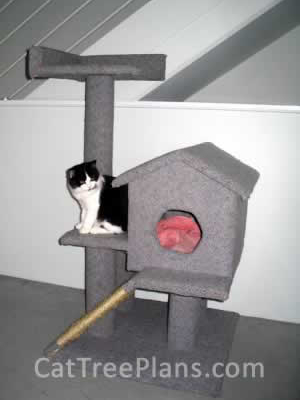 how to make a cat tree Cat Tree Plans Customer 049
