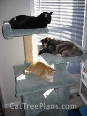 how to make a cat tree Cat Tree Plans Customer 055