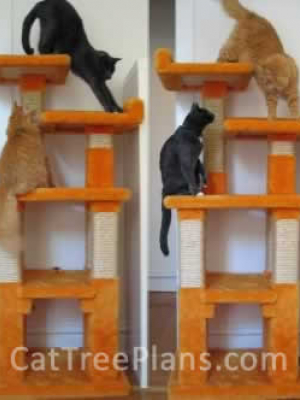how to make a cat tree Cat Tree Plans Customer 058