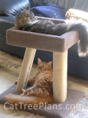 how to make a cat tree Cat Tree Plans Customer 062