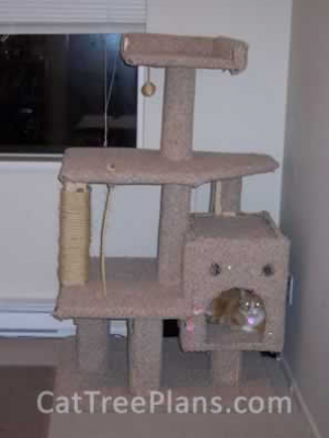 how to make a cat tree Cat Tree Plans Customer 067
