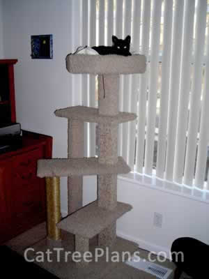 how to make a cat tree Cat Tree Plans Customer 079
