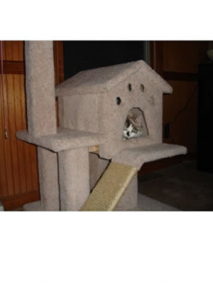 how to make a cat tree Cat Tree Plans Customer 086