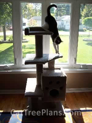 how to make a cat tree Cat Tree Plans Customer 096