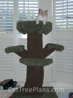 how to make a cat tree Cat Tree Plans Customer 098