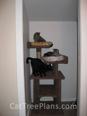 how to make a cat tree Cat Tree Plans Customer 105