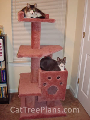how to make a cat tree Cat Tree Plans Customer 106