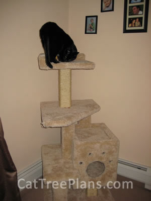 how to make a cat tree Cat Tree Plans Customer 113