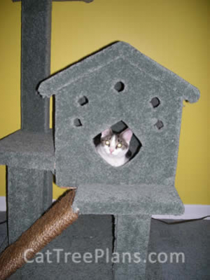 how to make a cat tree Cat Tree Plans Customer 114