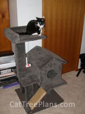how to make a cat tree Cat Tree Plans Customer 115