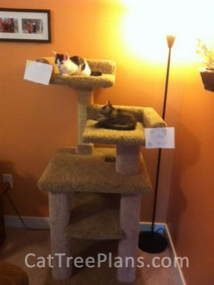 how to make a cat tree Cat Tree Plans Customer 116