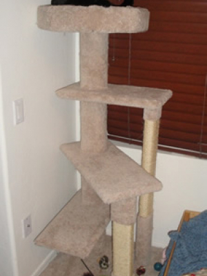 how to make a cat tree Cat Tree Plans Customer 120