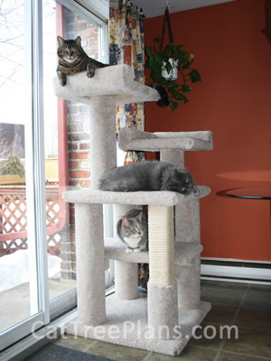 how to make a cat tree Cat Tree Plans Customer 121