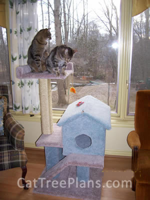 how to make a cat tree Cat Tree Plans Customer 122