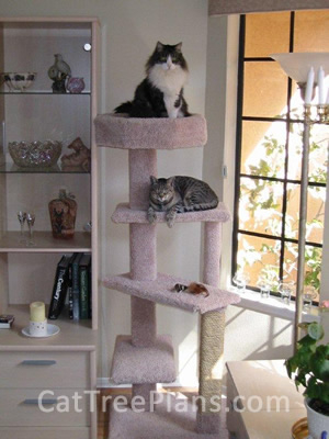 how to make a cat tree Cat Tree Plans Customer 123