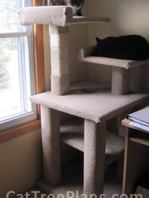 how to make a cat tree Cat Tree Plans Customer 124