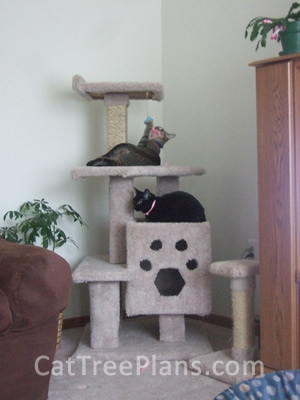 how to make a cat tree Cat Tree Plans Customer 128