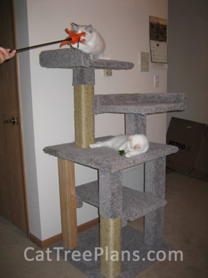 how to make a cat tree Cat Tree Plans Customer 130