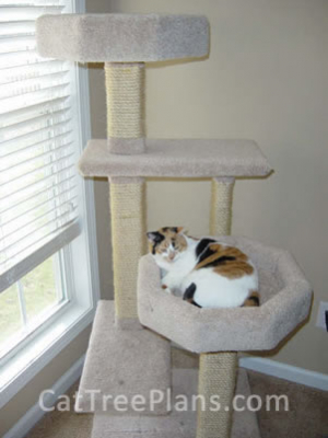 how to make a cat tree Cat Tree Plans Customer 132