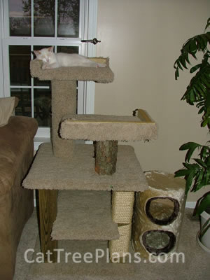 how to make a cat tree Cat Tree Plans Customer 134