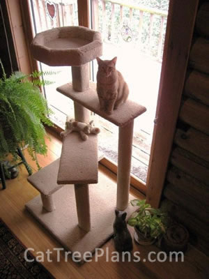 how to make a cat tree Cat Tree Plans Customer 135