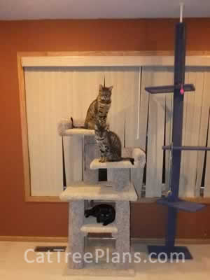 how to make a cat tree Cat Tree Plans Customer 141