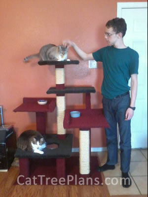 how to make a cat tree Cat Tree Plans Customer 143
