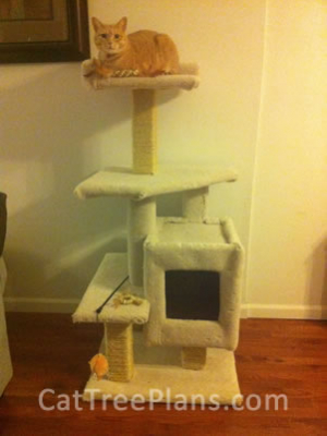 how to make a cat tree Cat Tree Plans Customer 145