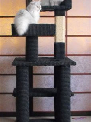 how to make a cat tree Cat Tree Plans Customer 146