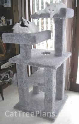 Customers cat trees cat tree plans for How to make a cat tower