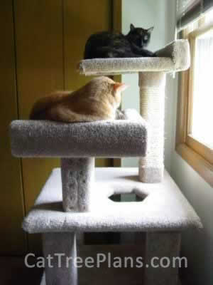 Cat Tree Plans Customer 010