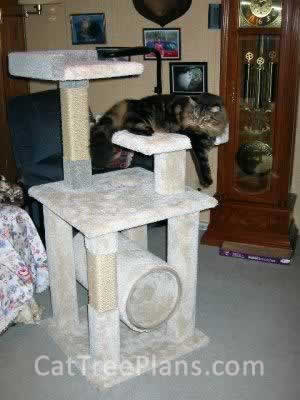 Cat Tree Plans Customer 017