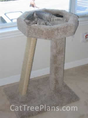 Cat Tree Plans Customer 018